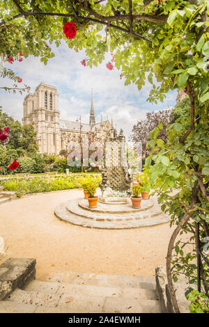 notre dame cathedral seen from square rene viviani - Stock Photo