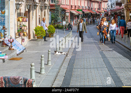 A stray cat lies half on the sidewalk and half on the street on a colorful street of shops in the Sultanahmet district of Istanbul Turkey - Stock Photo