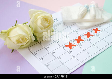 Flat lay composition with white roses and menstrual tampons and pad packs on menstruation period calendar and blue pink and lilac pastel background. G - Stock Photo