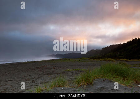 CA03676-00...CALIFORNIA - Cloudy sunrise at Gold Bluffs Beach, located on the California Coast Trail in Prairie Creek Redwoods State Park. - Stock Photo