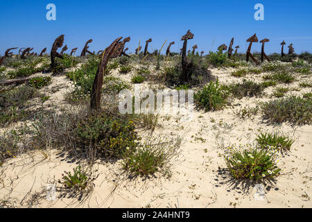 The scenic Anchors Cemetery laying among the dunes of Barril beach near Tavira, Algarve, Portugal - Stock Photo