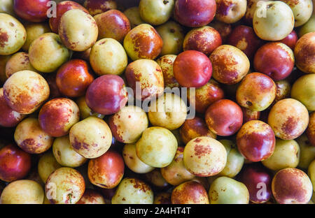 Monkey Apple fruit / Ripe jujubes on texture background in the fruit market aians - Stock Photo