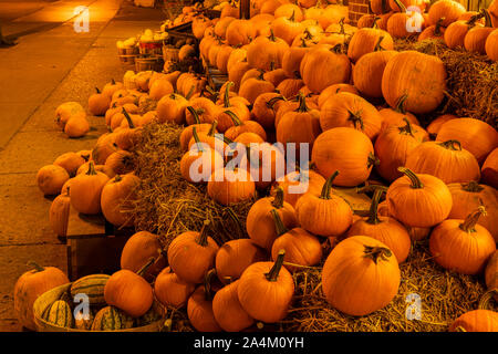 Pumpkins on the sidewalk - Stock Photo