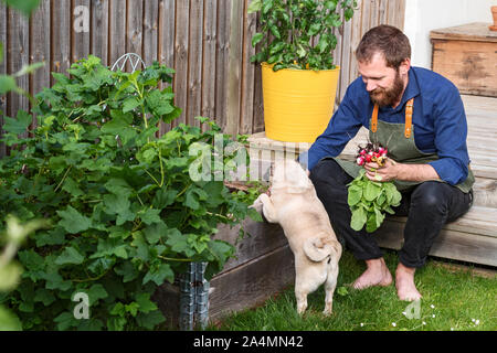 Man in garden - Stock Photo