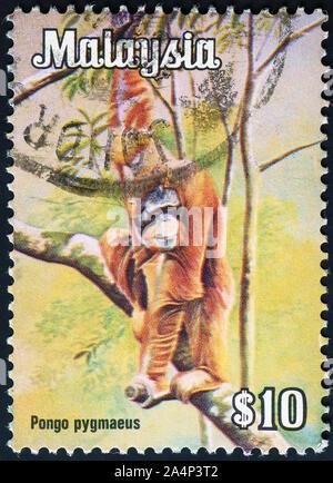 Orangutan on malaysian postage stamp - Stock Photo