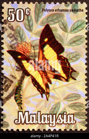 Beautiful butterfly on malaysian postage stamp - Stock Photo