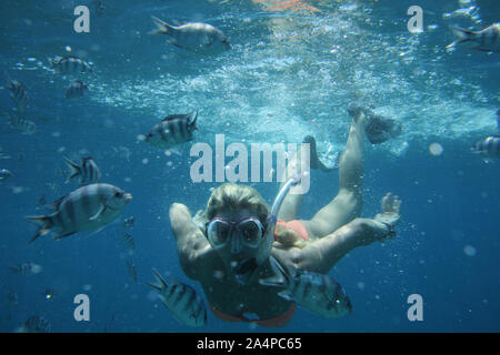 blond woman snorkling in clear water rurrounded with fish