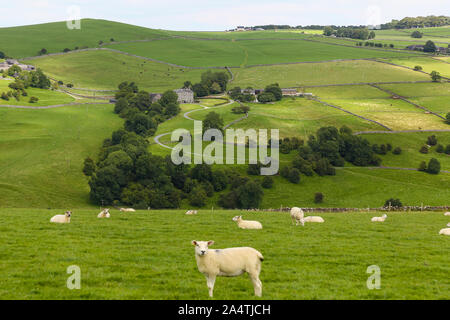 A long distance shot of Castern Hall, a privately owned 18th century country house or home situated in the Manifold Valley near Ilam Staffordshire - Stock Photo
