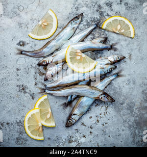 Fresh catch Shishamo fish fully eggs . Shishamo fish is popular fish for Japanese cuisine cooking Tempura. Fresh Shishamo fish tempts buyers at fresh - Stock Photo