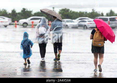 JEJU - SEPT 28: JEJU - SEPT 28: Typhoon. Cold and windy day in Jeju Island on September 28. 2016 in South Korea - Stock Photo