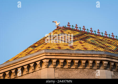 Bird perched on colorful church rooftop in south of France - Stock Photo