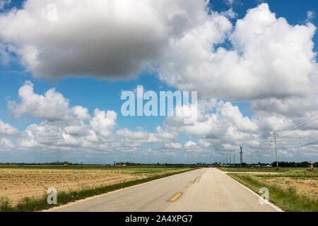 Large fluffy clouds over an emtpy two lane highway stretches to the horizon with empty fields on either side in the Everglades, Homestead, Florida Stock Photo