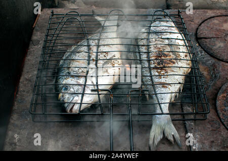 Gilt-head bream fish grilled on iron hot plate closeup - Stock Photo