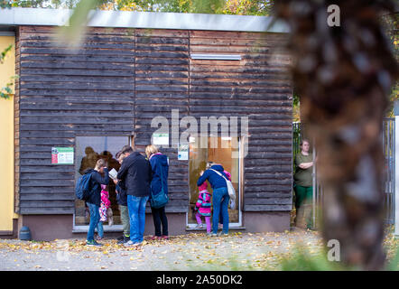 Hoyerswerda, Germany. 17th Oct, 2019. Visitors stand in front of the renovated turtle house in Hoyerswerda Zoo and look through the viewing windows. The turtles can weigh up to 300 kilograms and live to be about 170 years old. The turtle house was extensively energetically reorganized and can be used since beginning of the year by the animals. Credit: Jens Büttner/dpa-Zentralbild/ZB/dpa/Alamy Live News - Stock Photo