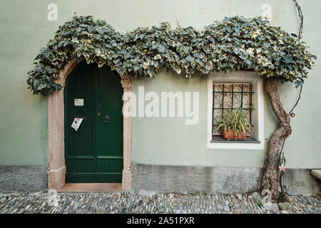 Borgio Verezzi, Liguria, Italy - December 8 2018: Characteristic green house in the historical part of the village covered with ivy - Stock Photo