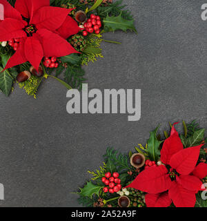 Poinsettia flower border with winter flora of holly, cedar and ivy, mistletoe and acorns on grunge grey background. Festive theme for Thanksgiving. - Stock Photo