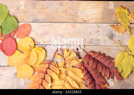 Autumn Leaves over wooden background.Top view - Stock Photo
