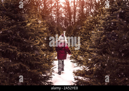 Boy searching for a perfect Christmas tree on a snowy winter day