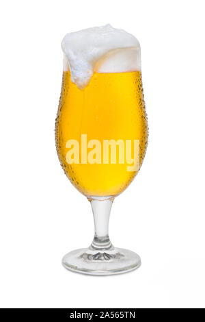 Full Belgium Ale with Condensation, Foam Head, Drip, and Run. - Stock Photo
