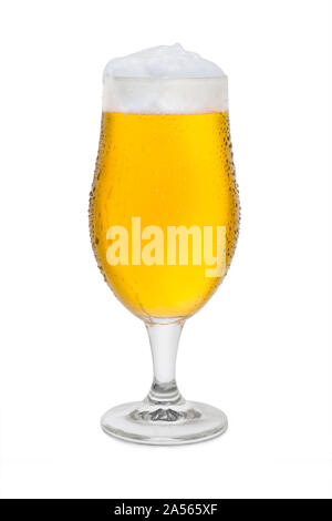 Full Belgium Ale with Condensation. - Stock Photo