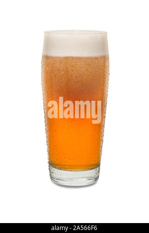 Freshly Poured Craft Pub Beer Glass #1 with Condensation . - Stock Photo
