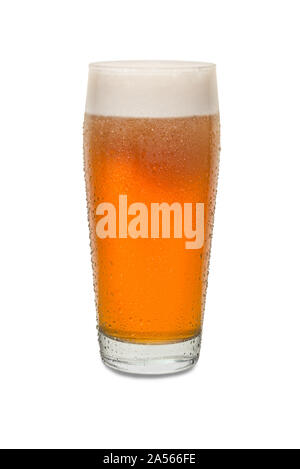 Freshly Poured Craft Pub Beer Glass #2 with Condensation . - Stock Photo