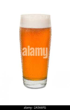 Freshly Poured Craft Pub Beer Glass #3 with Condensation . - Stock Photo