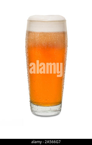 Freshly Poured Craft Pub Beer Glass #4 with Condensation . - Stock Photo
