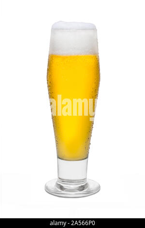 Classic Pilsner Beer with Condensation, with Foam Head #2. - Stock Photo