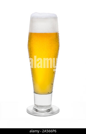 Classic Pilsner Beer with Condensation, with Foam Head #4. - Stock Photo