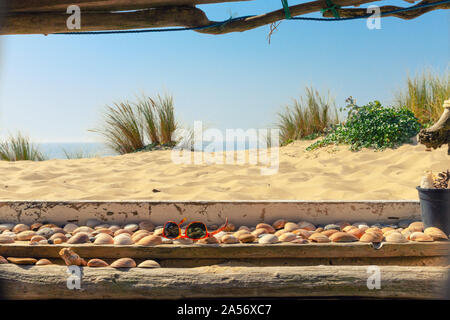 Wild atlantic beach landscape view from a cozy wooden hut, Lacanau, France - Stock Photo