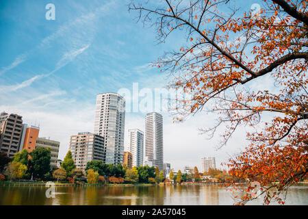 Ueno park Shinobazu pond and modern buildings at autumn in Tokyo, Japan - Stock Photo