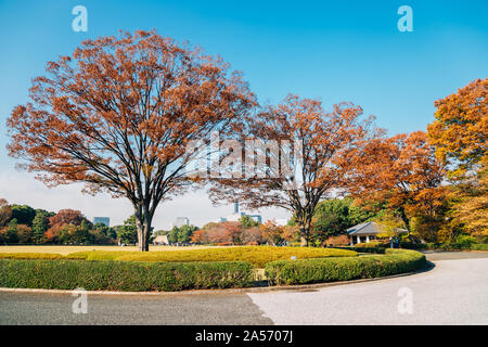 Imperial Palace East Gardens at autumn in Tokyo, Japan - Stock Photo
