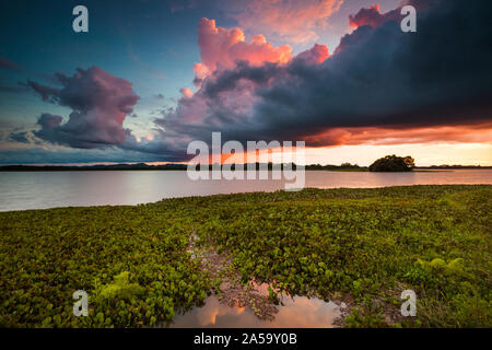Dramatic sunset in the wetlands of Refugio de la vida silvestre Cienaga de las Macanas, Herrera province, Republic of Panama. - Stock Photo