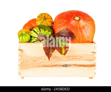 Pumpkin in wooden tray box isolated on white. Image included clipping path - Stock Photo