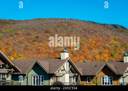 Fall colors in the mountains - Stock Photo