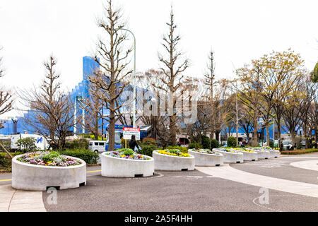 Tokyo, Japan - March 28, 2019: Yoyogi park near Meiji shrine with bare trees and flower decorations on square street during cold spring day - Stock Photo