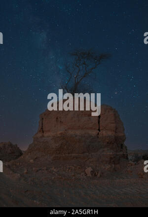 Busamra Milkyway view of Lonely Tree on Rock in middle of desert