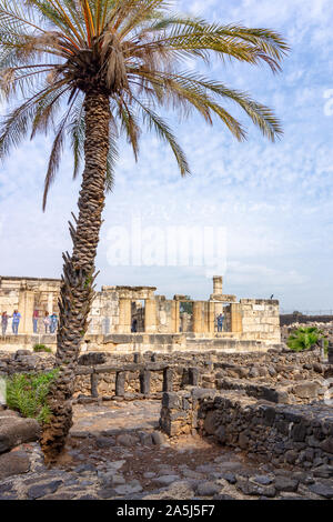 view of the ruins of synagogue in Capernaum, Galilee, Israel, where Jesus practice the Gospel - Stock Photo