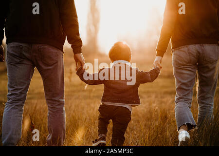 Rear view of family holding hands and walking at sunset in autumn meadow.