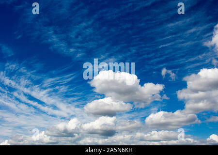 Fluffy white cumulus  cumulostratus cloud formations on a spring afternoon are contrasted against the azure blue Australian sky with a dreamy theme. - Stock Photo