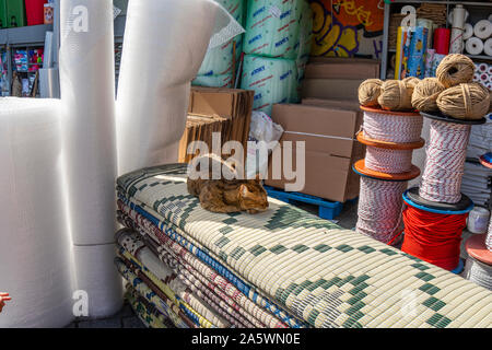 A stray tabby cat sleeps on fabric at an outdoor rug and fabric vendor in the Eminonu bazaar area of Sultanahment district. - Stock Photo