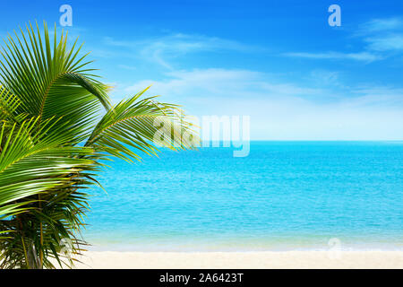 Beautiful white sand beach on blue sea water, white clouds background, green palm tree leaves closeup exotic tropical paradise island vacation concept