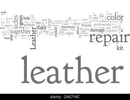 Advanced Leather Repair - Stock Photo