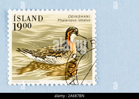Close up of Iceland postage stamp featuring Phalaropus lobatus, Red-necked Phalarope, a wader bird, issued in 1989. - Stock Photo
