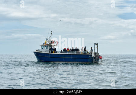 Dive boat with divers off the coats of Farne Islands. Northumberland, England - Stock Photo