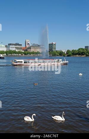 passenger ship and swans on Lake Inner Alster, Hamburg, Germany - Stock Photo