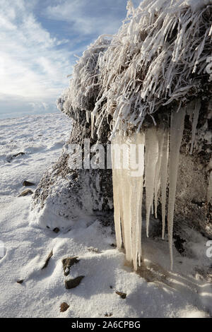 Icicles and hoar frost on Whernside carpeted in snow and ice mid winter Yorkshire Dales