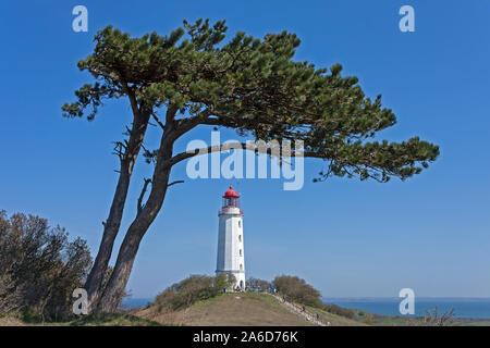 The lighthouse on Dornbusch Hill on Hiddensee Island, Mecklenburg-West Pomerania, Germany. - Stock Photo