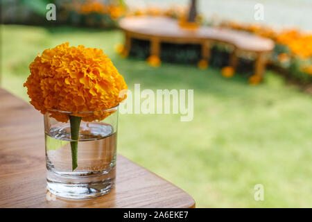 Marigold flower in a small glass on a wooden table in a cafe. Natural background.  With space. - Stock Photo